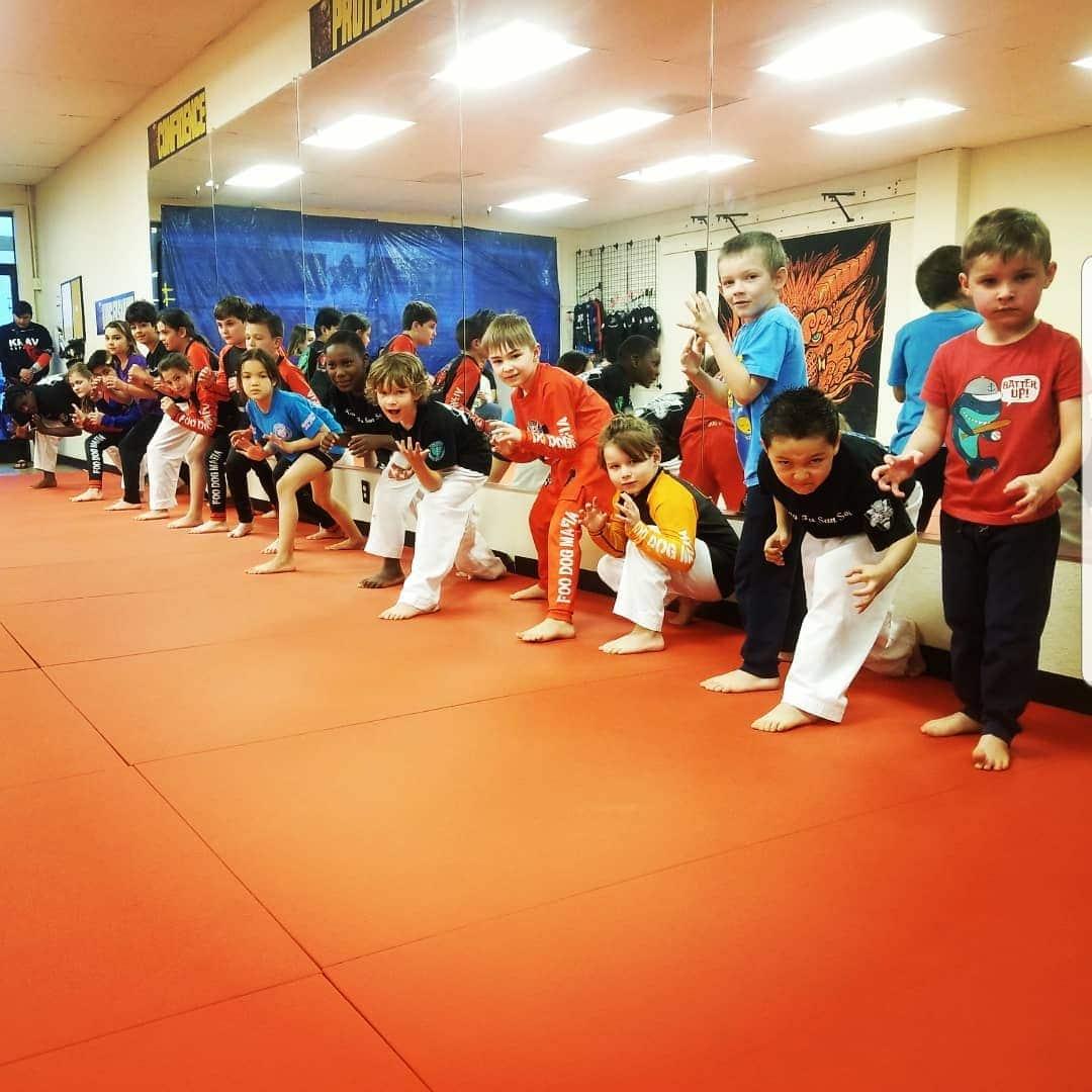 Foo Dogs Martial Arts Academy Kids Martial Arts