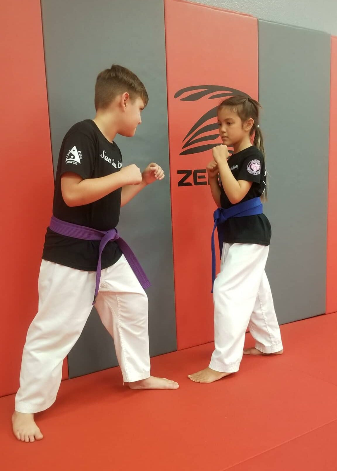 Foo Dogs Martial Arts Academy Kids <br> Martial Arts image