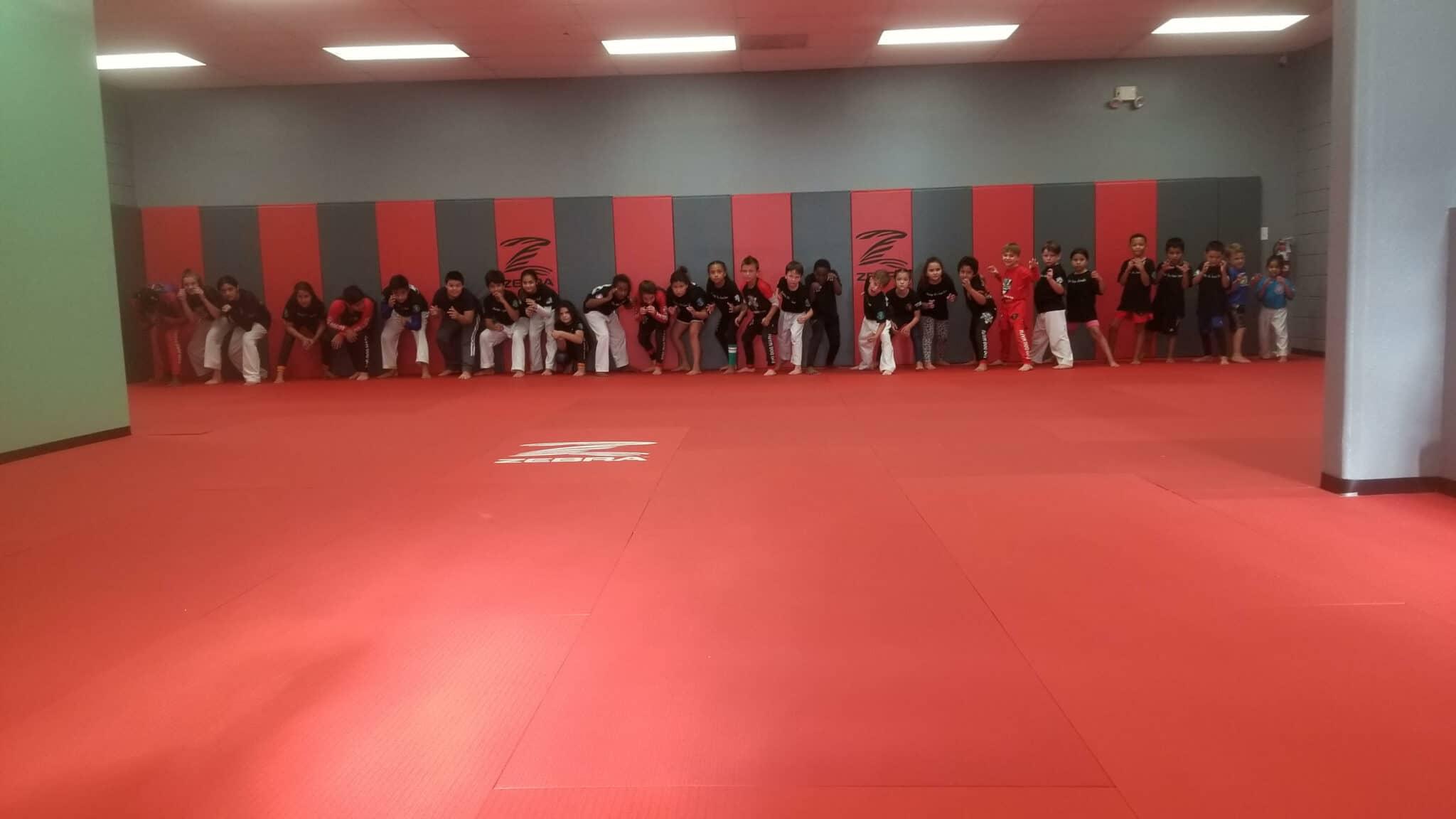 Foo Dogs Martial Arts Academy Brazilian Jiu Jitsu