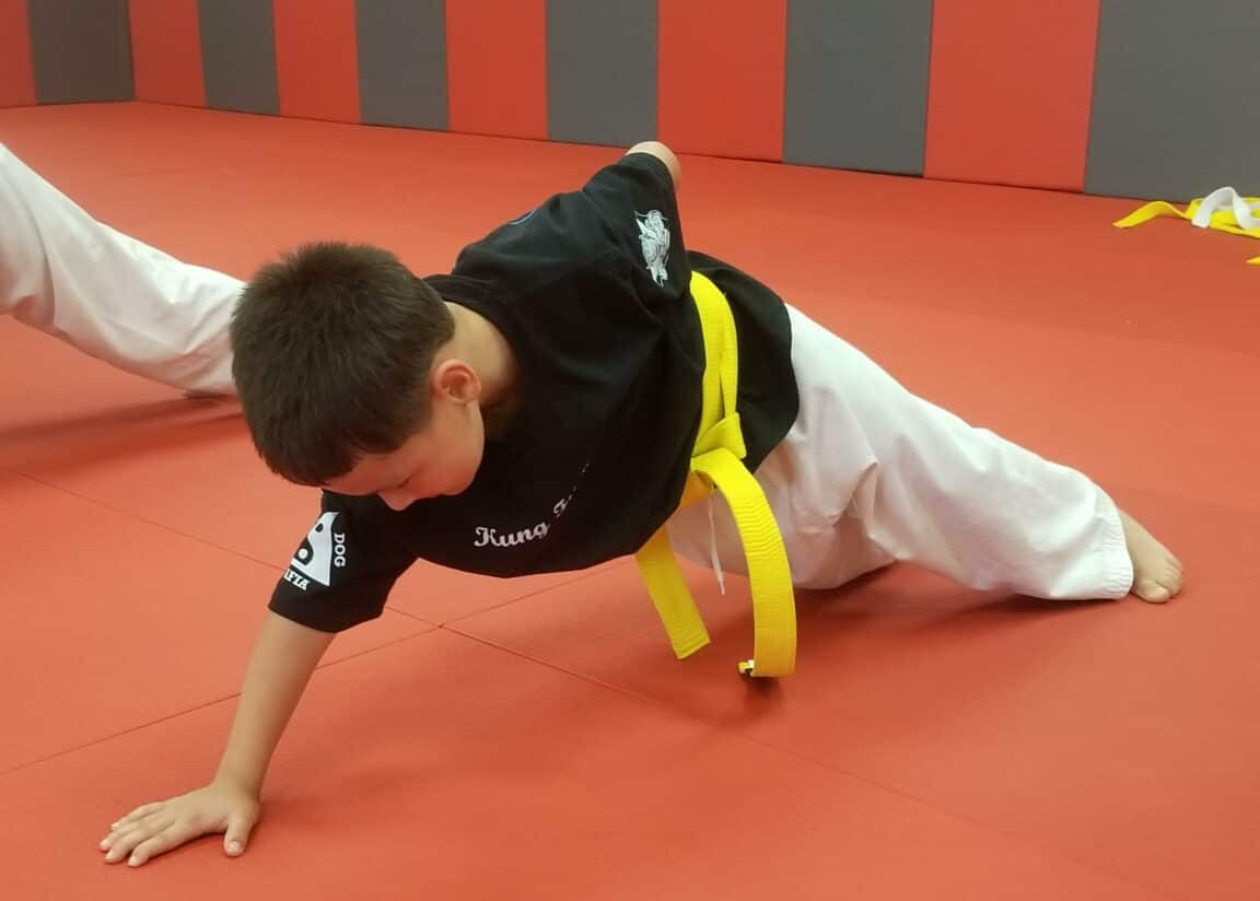 Foo Dogs Martial Arts Academy Foo Dogs' Kids Martial Arts Programs